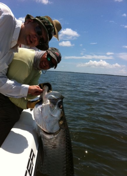 2014 hill tide dates for boca grande tarpon for Tarpon fly fishing